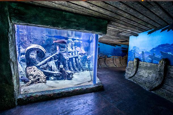 Malta National Aquarium Malta